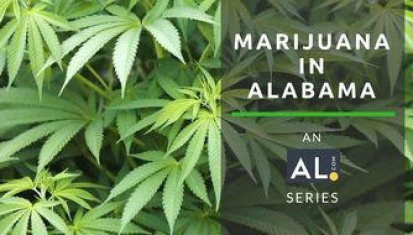 legal-marijuana-will-alabama-be-last_1
