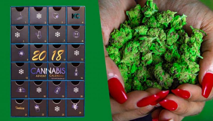 the-best-ways-to-celebrate-the-twelve-days-of-cannabis-mas_1